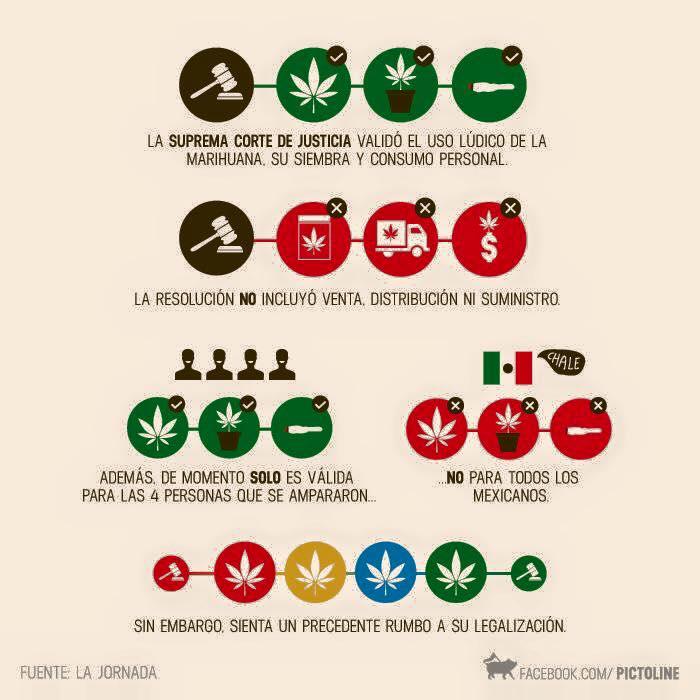 uso-marihuana-en-mexico